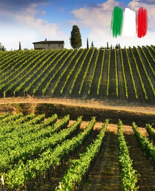 "Italy is the country that ""breathes in the neck"" of France in the ranking of the largest wine producer in the world."