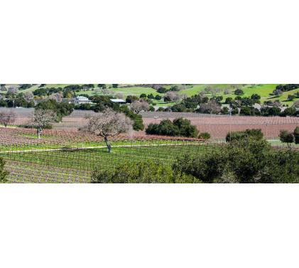 Santa Barbara Country