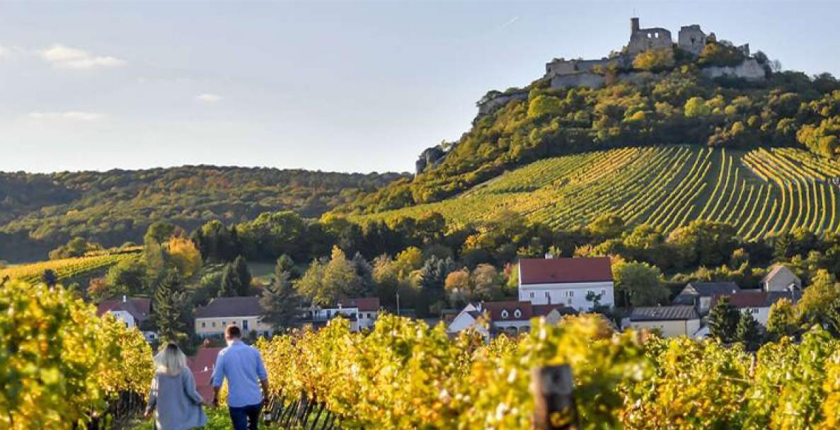 Червени вина от Австрия