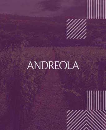 Андреола