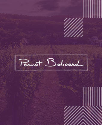 Pernot Belicard