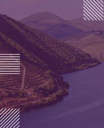 Долината на Дуро