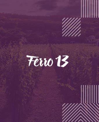 Феро 13