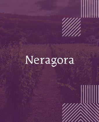 Нерагора