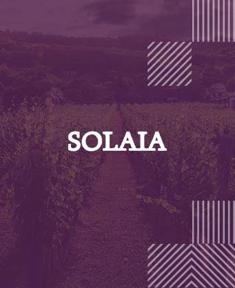 Солая