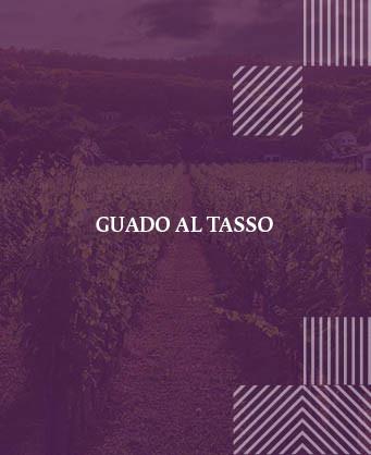 Гуадо ал Тасо