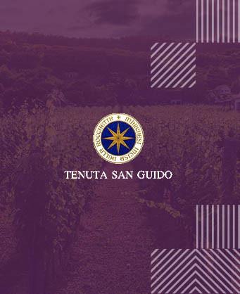 Тенута Сан Гуидо