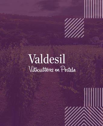 Бодегас Валдесил