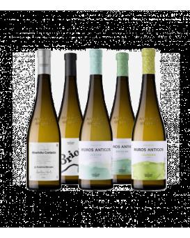 Селекция от 5 вина на Анселмо Мендеш