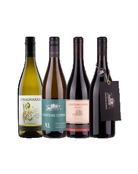 Пакет 1 4 вина от Шато Копса