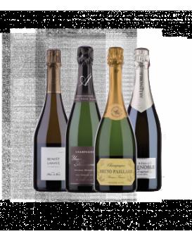 Пакет четири перли от Шампан