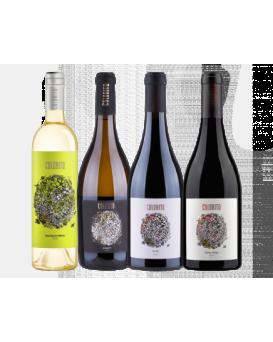 Комплект 1: 4 вина Колорито