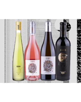 Комплект 3: 4 вина Колорито