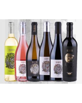 Комплект 2: 6 вина Колорито