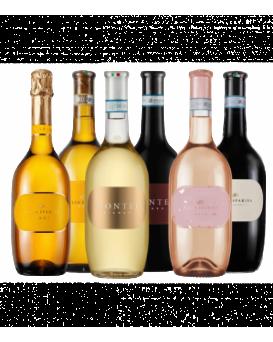 Пакет 6 вина от Вила Спарина